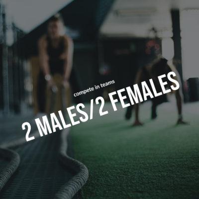 2Males/2Females
